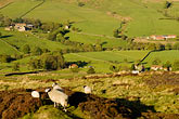 yorkshire stock photography | England, North Yorkshire, Rosedale, farms and houses , image id 4-900-2249
