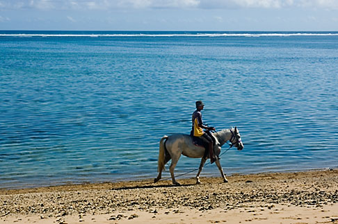 image 5-610-2733 Fiji, Viti Levu, Horseback riding on beach