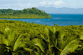rain forest stock photography | Fiji, Viti Levu, South Coast near Korotogo, image id 5-610-9270