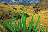 color stock photography | Fiji, Hillside, Nausori Highlands, image id 9-530-89