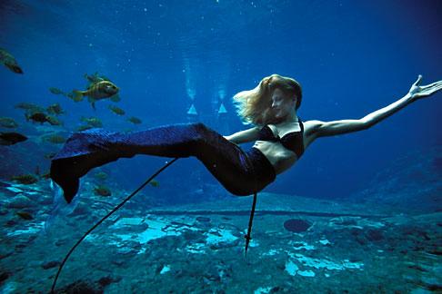 image 2-466-7 Florida, Weeki Wachee Springs, Weeki Wachee Springs, Mermaid show