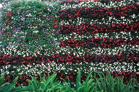 image 2-480-78 Florida, Winter Haven, Cypress Gardens