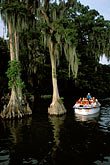 forest stock photography | Florida, Winter Haven, Cypress Gardens, image id 2-481-27