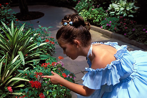 image 2-482-42 Florida, Winter Haven, Cypress Gardens, Butterfly Garden