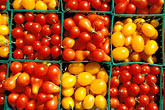 multicolour stock photography | Food, Cherry tomatoes, image id 5-356-9