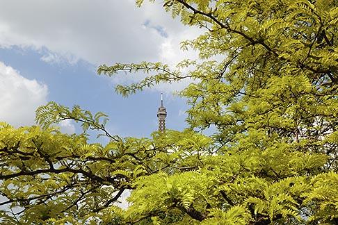 image 6-450-267 France, Paris, Eiffel Tower