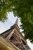 tree stock photography | France, Paris, Eiffel Tower , image id 6-450-363