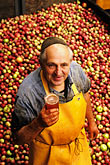 one mature man stock photography | Germany, Frankfurt, Herr Wolfgang Wagner and fresh-press applewine, image id 5-539-11