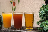apfelwein stock photography | Germany, Frankfurt, Three stages of applewine - S��er, Rauscher & Alt, image id 5-552-8