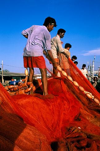 image 0-610-73 India, Goa, Fishermen, Betiim