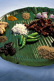 flavour stock photography | India, Goa, Goan spices, image id 0-613-77