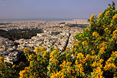wildflower stock photography | Greece, Athens, City from Mount Likavitos, image id 3-653-59