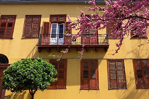 image 3-654-72 Greece, Athens, Monastiraki, House with tree blossoms