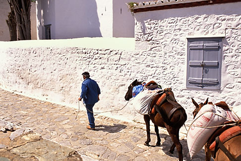 image 3-702-45 Greece, Hydra, Man with donkeys