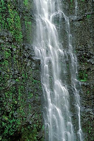image 4-42-25 Hawaii, Maui, Waimoku Falls, Haleakala Nat Park