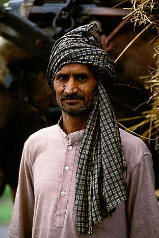 image 7-314-8 India, Rajasthan, Farmer