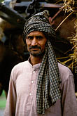 turbaned rajasthani stock photography | India, Rajasthan, Farmer, image id 7-314-8