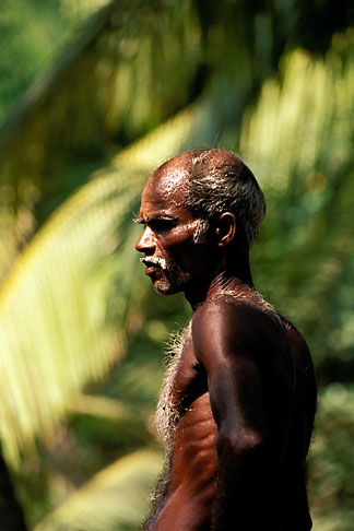 image 7-60-20 India, Trivandrum, Laborer in forest