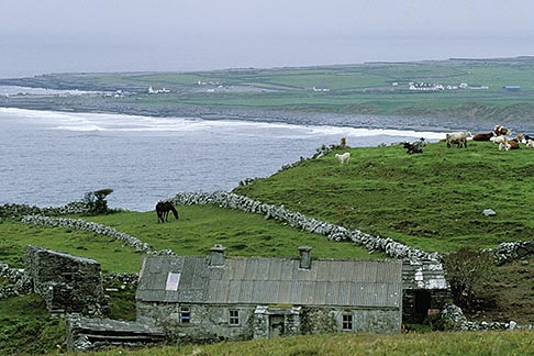 image 4-752-37 Ireland, County Clare, Doolin, Farm by the sea