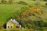 plantation stock photography | Ireland, County Cork, Farm on hillside, image id 4-900-1080
