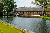 tree stock photography | Ireland, County Antrim, Bushmills Distillery, image id 4-900-509