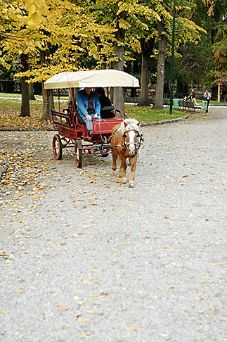 image S4-511-7369 Italy, MIlan, Carriage Ride, Giardini Pubblici