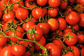 close up stock photography | Italy, Siena, Tomatoes, image id S4-522-8194