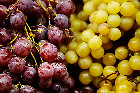 image S4-522-8476 Italy, SIena, Grapes