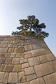 single color stock photography | Japan, Tokyo, Imperial Palace, image id 5-850-1856