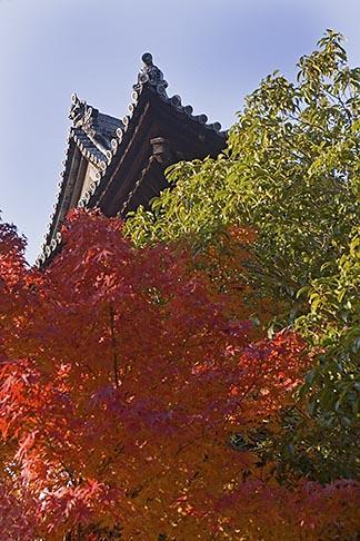 image 5-855-2393 Japan, Kyoto, Konkai Kumyoji Temple roof