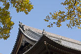 clear sky stock photography | Japan, Kyoto, Konkai Kumyoji Temple roof, image id 5-855-2528
