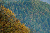 autumn foliage stock photography | Kentucky, Southeast, Pine Mountain State Park, image id 1-383-20