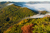 kentucky stock photography | Kentucky, Southeast, Cumberland Gap National Historical Park, Morning fog, image id 7-740-787
