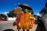saffron stock photography | Laos, Luang Prabang, Monks with parasols, image id 8-603-29