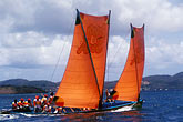 orange stock photography | Martinique, Yoles rondes racing, image id 8-311-18