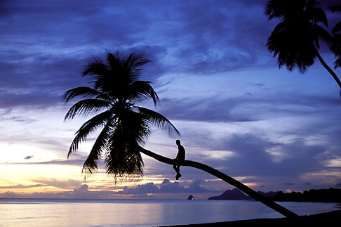 image 9-25-1 Martinique, Anse des Salines, Beach at sunset