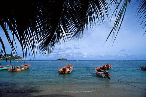 image 9-35-59 Martinique, La Caravelle, Beach, Tartane