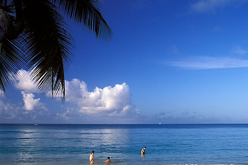 image 9-36-82 Martinique, Cap Chevalier, Beach