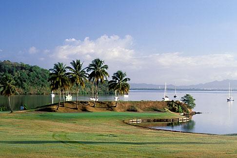 image 9-80-18 Martinique, Trois Islets, Golf de la Martinique