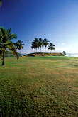 palms golf course stock photography | Martinique, Trois-�slets, Golf de la Martinique, image id 9-80-23