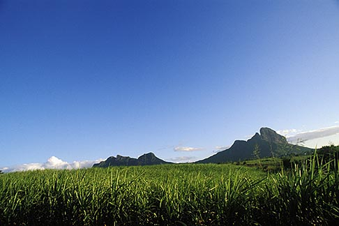 image 9-202-6 Mauritius, Sugar cane fields and mountains