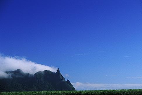 image 9-202-91 Mauritius, Sugar cane fields and Pieter Both Peak