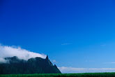 cloudy stock photography | Mauritius, Sugar cane  fields and Pieter Both Peak, image id 9-202-91