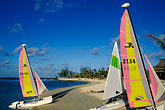 palms on the beach stock photography | Mauritius, Sailboats on beach, Le Prince Maurice Hotel, image id 9-204-58