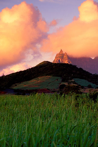 image 9-206-12 Mauritius, Morning light on Pieter Both peak