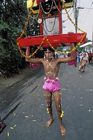 image 9-220-66 Mauritius, Cavadee Festival, Devotee carrying a wooden cavadee