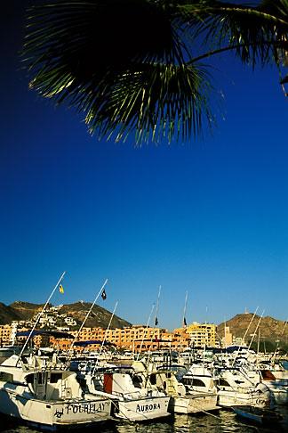 image 0-52-55 Mexico, Cabo San Lucas, Harbor