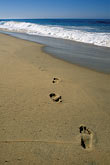pacific ocean coastline stock photography | Mexico, Baja California Sur, Footprints on beach, image id 0-62-67