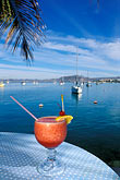 harbour stock photography | Mexico, La Paz, Fresh fruit punch, image id 0-80-9