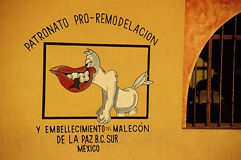 image 0-81-55 Mexico, La Paz, Remodeling